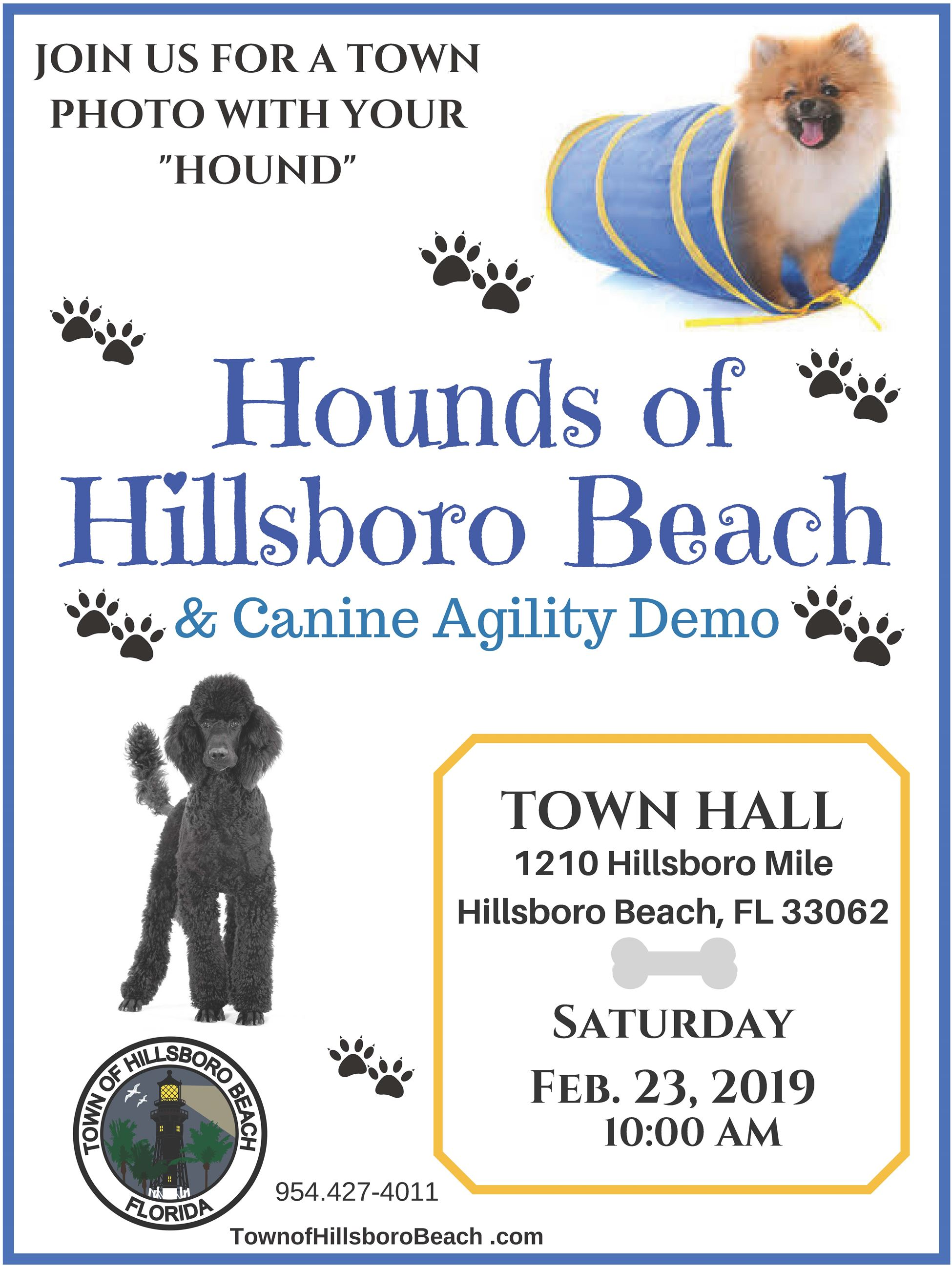 Hounds of TOHB Flyer